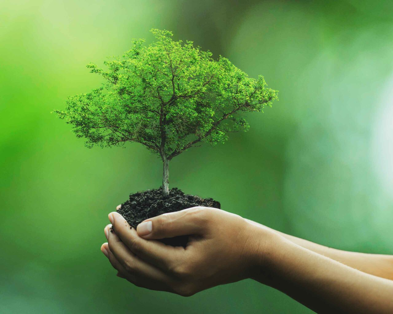 biogas_ecofriendly